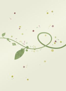 Olive, lin, colza, tournesol… Quels types d'huile utiliser ?