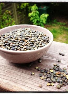 Les lentilles vertes : fiche produit, recettes, conseil d'achat et conservation