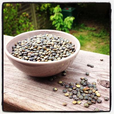 Les lentilles vertes fiche produit recettes conseil d - Cuisiner les lentilles vertes ...