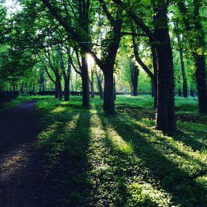Balade au Parc de Sceaux