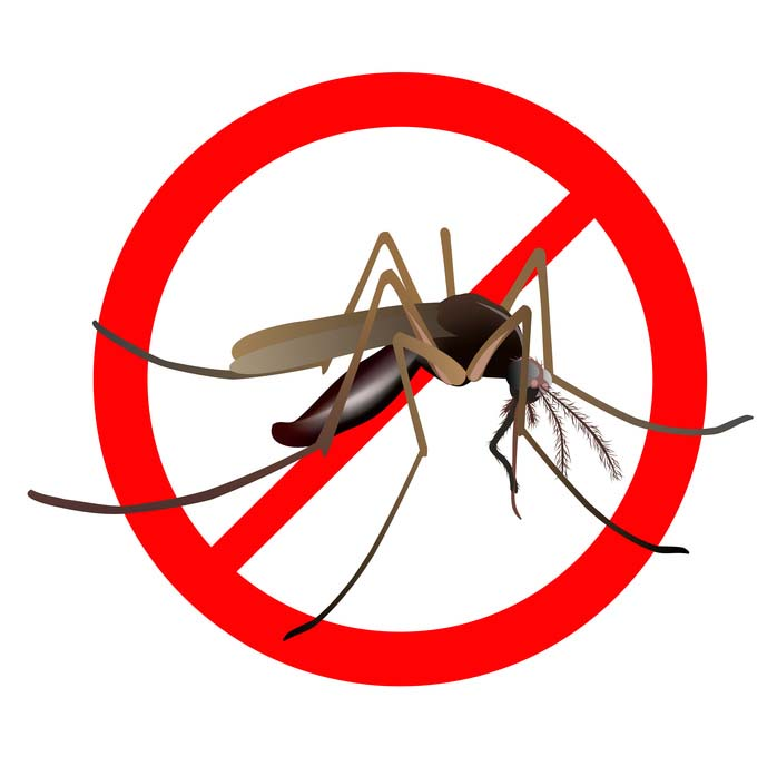 6 astuces naturelles pour lutter contre les moustiques et. Black Bedroom Furniture Sets. Home Design Ideas