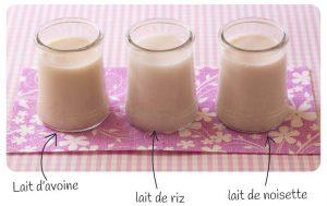 Comment utiliser les laits végétaux ? Comment sont fabriquées ces boissons végétales ?