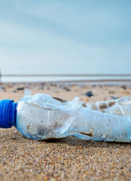 5 astuces pour renoncer au plastique – stop à la pollution des océans !